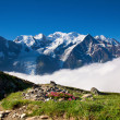 A beautiful view of the french alps — Foto Stock