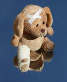 Sad Plush dog with broken leg — Stock Photo