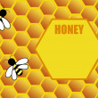 Honeycomb background with bee — Stockvectorbeeld