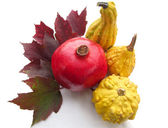 Pomegranate and Autumn Gourds — Stock Photo