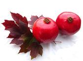 Pomegranates — Stock Photo