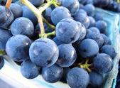 葡萄 — 图库照片