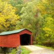Covered Bridge — Stock Photo #5206683