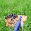 Picnic Basket and Wine — Stock Photo