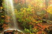 Waterfall Fall — Stock Photo