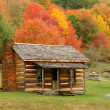 Cabin in Autumn — Stock Photo #5213894