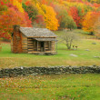 Old Cabin — Stock Photo #5213923