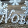 Noel and Snowflakes — Stock Photo