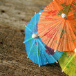 Drink Umbrellas — Stock Photo