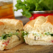 TunSalad Sandwich — Stock Photo #5225485