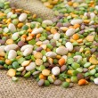 Stock Photo: Mixed Beans