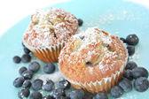 Fresh Blueberry Muffins — Stock Photo