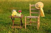 Summer Evening with Lemonade — Stock Photo