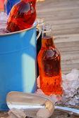 Flavored Soda Pop — Stock Photo