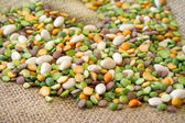 Mixed Beans — Stock Photo