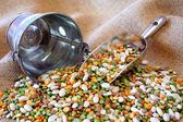 Bean Mixture — Stock Photo