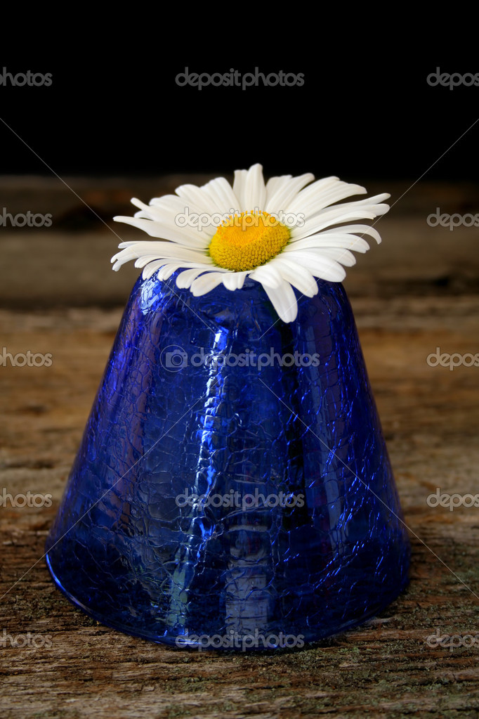A single daisy in a blue vase sitting on an old piece of wood. — Stock Photo #5224458