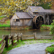 Spring at Water Mill — Stock Photo #5237864