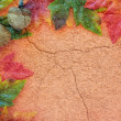Autumn Texture — Stock Photo