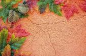 Autumn Texture — Stock Photo