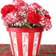 Carnations of Red and White — Stock Photo