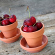 Fresh Cherries — Foto Stock