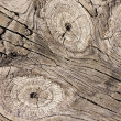 Wooden board texture — Stock Photo