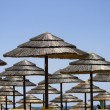 Rows of straw umbrellas - Foto Stock