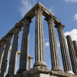 Temple of Diana — Stock Photo #5225693