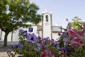 Flower focus, church unfocused — Stock Photo