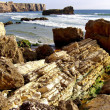 Stock Photo: Coastline of Sagres