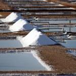 Salt piles — Stock Photo