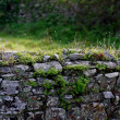 Ancient Wall — Stock Photo #5252063
