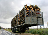 Trailer stacked — Stock Photo