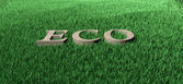 Ecologie — Stockfoto