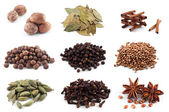 Cardamon, anise, pepper, cinnamon, nutmeg, bay, cloves — Stock Photo