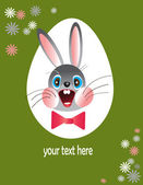 Easter funny bunny. — Stock Photo