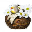 Chicken in nest with flowers — Stock Photo #5260558
