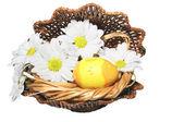 Påskägg med blommor i ett rede — Stockfoto