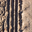 Trace on rural road — Stock Photo