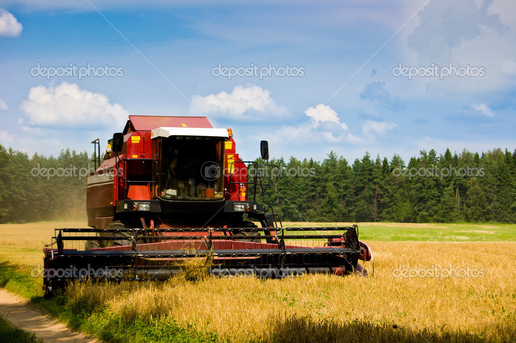The combine image in the field of a rye harvesting  Stock Photo #5352988