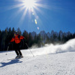 Foto Stock: The Skier