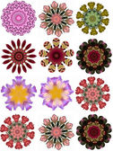 Medalion Floral Motif page elements — Stock Photo
