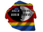 Flag and map of Swaziland — Stock Photo