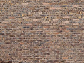 Old brick wall of a university building — Stock Photo
