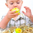 Little boy with easter eggs in basket — Stock Photo