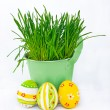 Colorful Easter eggs next to the bucket with the spring grass — Stock Photo
