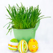 Stock Photo: Colorful Easter eggs next to the bucket with the spring grass