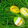 Stock Photo: Easter eggs are colored in green spring grass
