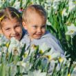 Child nd Daffodils — Stock Photo
